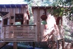 Tree Fort